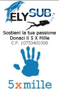 5_x_mille (1)